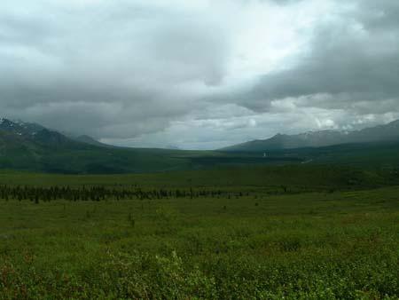 foothills.jpg