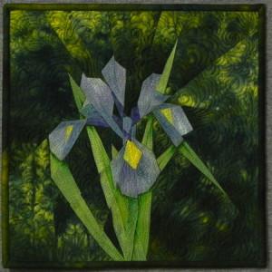 Iris_450