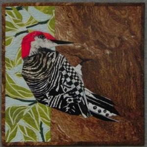 12x12Woodpecker