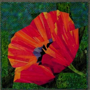 Poppy Workshop Samp